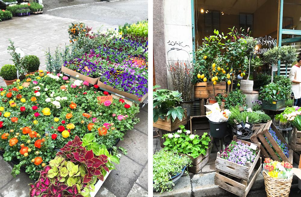 Flowers Stockholm