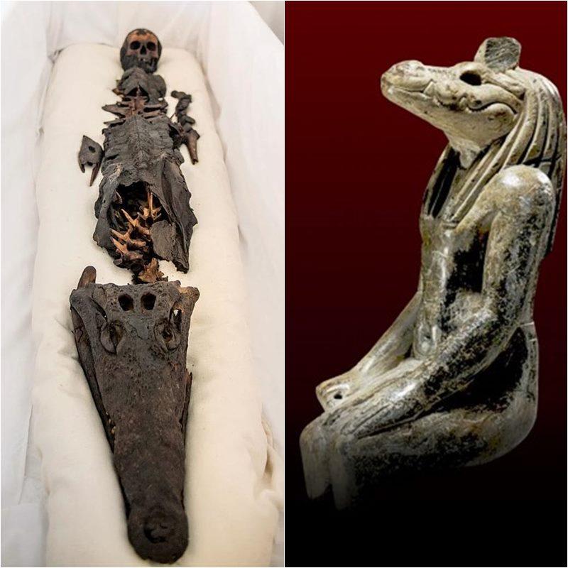 ingyenes cukor múmia Nigériábanvárosi szakemberek Londonban