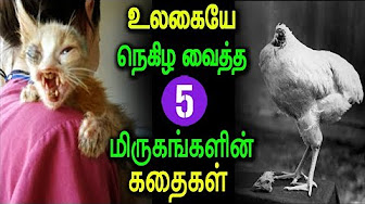 Narrates 5 animals survival stories….
