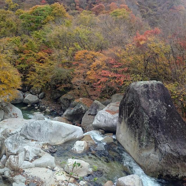 野猿谷 荒川
