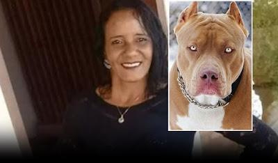 Pit bull ataca e mata a própria dona de 44 anos dentro de casa