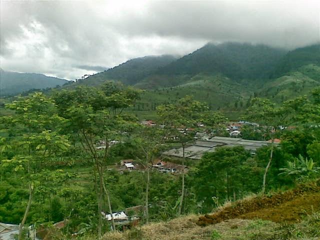 Foto%25285332%2529 Jual Tanah Di Puncak 2, Murah Jual tanah di cipanas jual tanah di puncak jual tanah di puncak2
