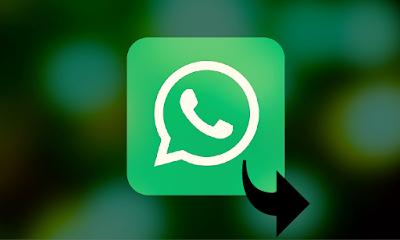 Cara Menghilangkan Tanda / Tag Pesan Diteruskan di Chat WhatsApp