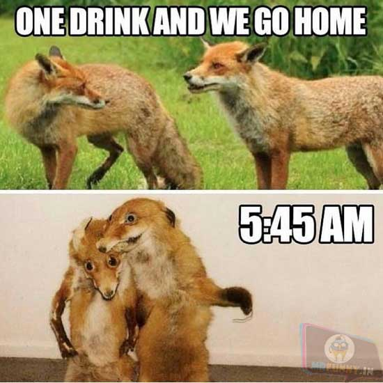 One drink, I swear!
