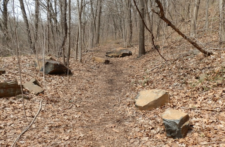 West Rock Trails