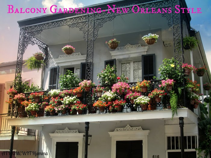 Inspirational Thursday-Balcony Gardening In New Orleans