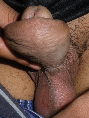 cock kept growing longer and thicker jpg 1152x768