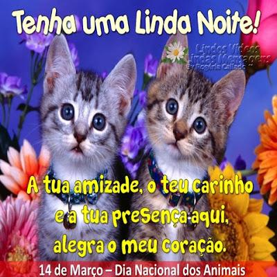 Tenha uma Linda Noite! A tua amizade, o teu carinho  e a tua presença aqui,  alegra o meu coração.  14 de Março - Dia Nacional dos Animais