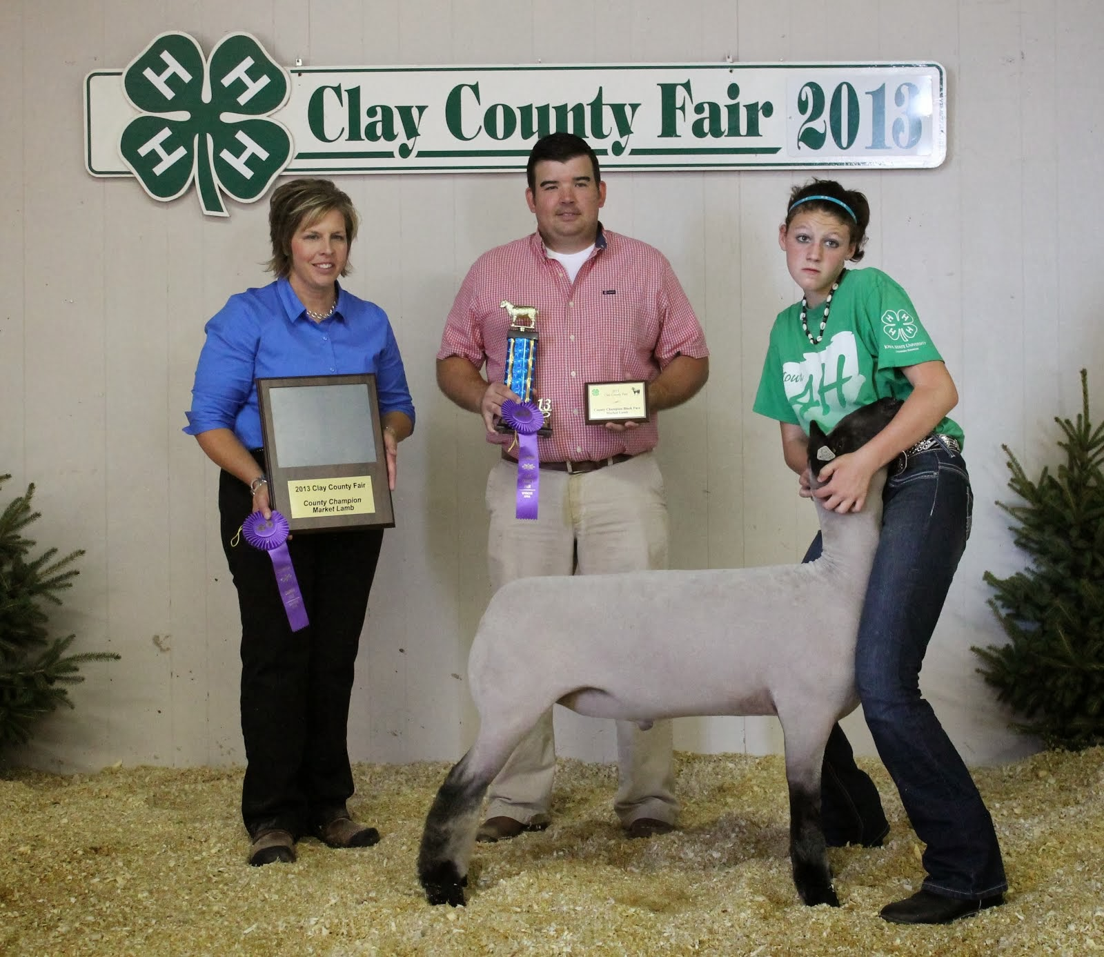 Grand Champion Market Lamb 2013 Overall Clay County/District