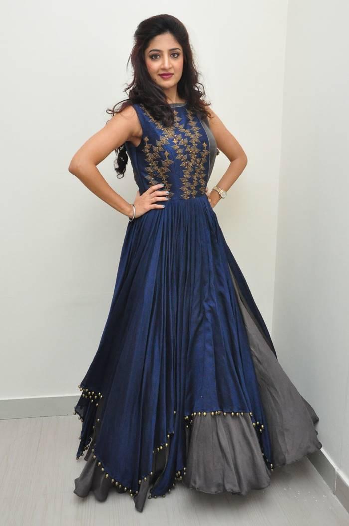 Tollywood Actress Poonam Kaur Long Hair In Blue Dress