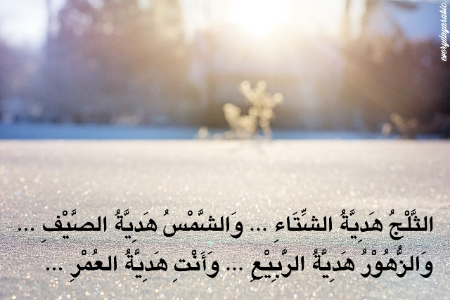Gambar Kata Mutiara Arab Quotemutiara