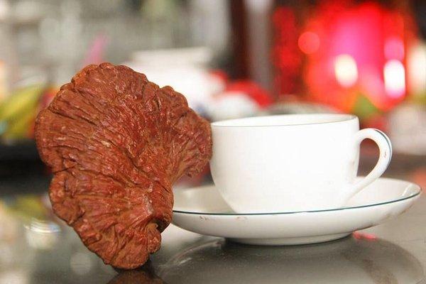 chọn nấm linh chi đỏ Hàn Quốc tốt