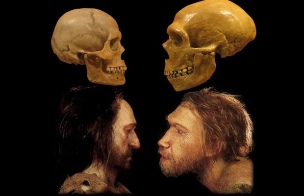 a history of the cro magnon in human evolution The evolution of man article on human evolution from h2g2 - written by the audience elsewhere on the web natural history museum - human origins.