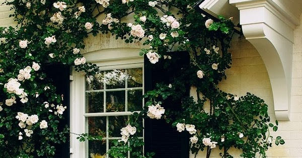 21 Rosemary Lane Classic White Painted Brick Abodes
