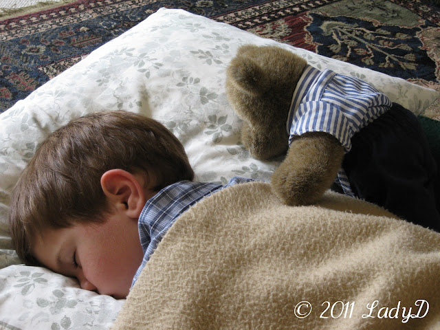 Grandson Sleeping: LadyD Books