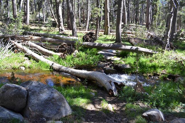 Gannon Creek