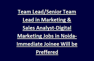 Team Lead/Senior Team Lead in Marketing & Sales Analyst-Digital Marketing Jobs in Noida