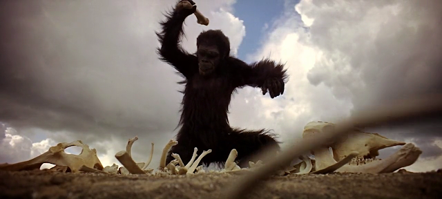 An ape-like hominid learn to use bone as a tool as well as a weapon, 2001: A space Odyssey (1968), directed by Stanley Kubrick