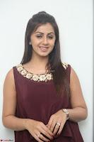 Nikki Galrani in a Brown Shining Sleeveless Gown at Nakshatram music launch ~  Exclusive 053.JPG
