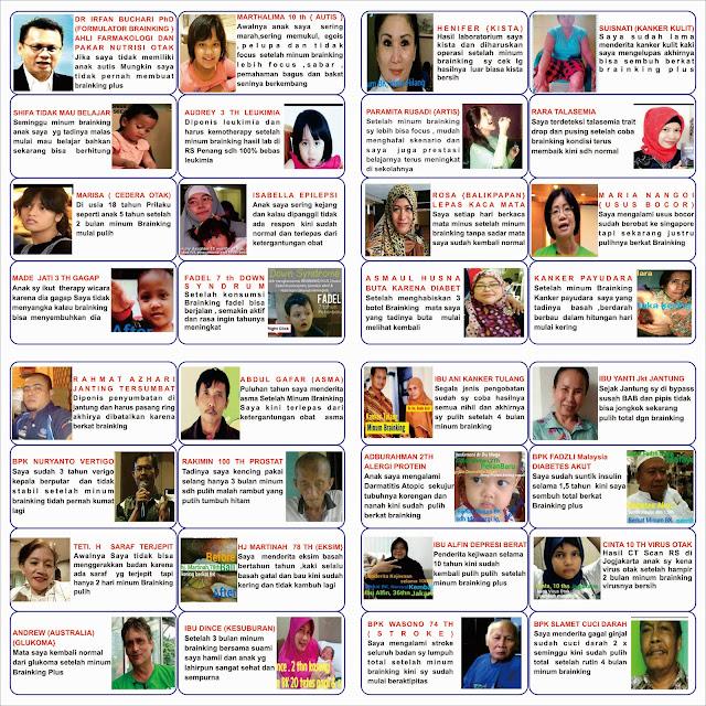 http://brainkingnutritionplus.blogspot.co.id/