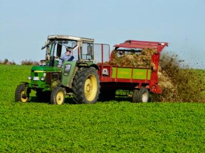 Νέοι αγρότες ξαναζωντανεύουν την ύπαιθρο