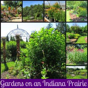 Gardening Inspiration showcasing flowers and shrubs