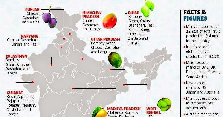 Ban on Indian mango imports to EU to be lifted