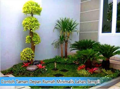 Contoh Taman Depan Rumah Minimalis Lahan Sempit