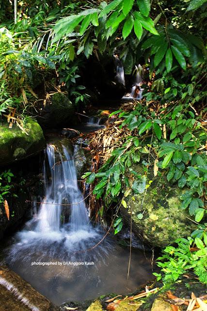 Air terjun mini di Kampung Gobang-Singkup Kota Tasikmalaya