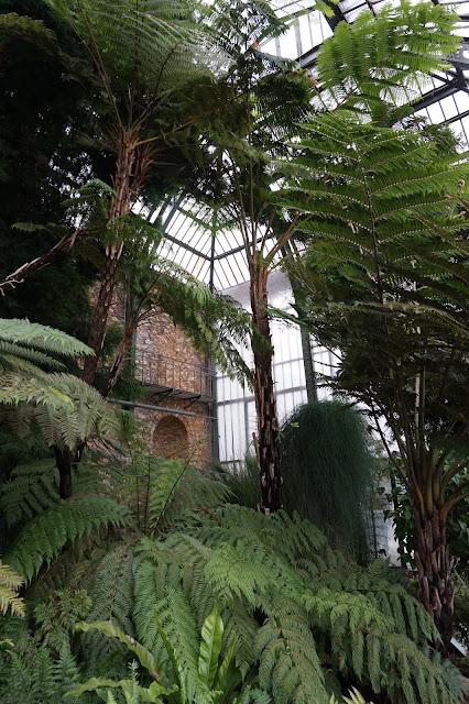Jardin des Plantes - Serre de l'Histoire des plantes
