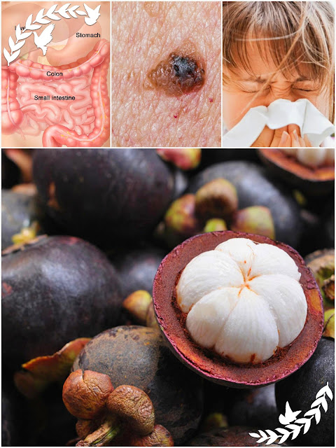 This Fruit Is Banned Because It Fights Colon, Breast, Pancreatic And Skin Cancer