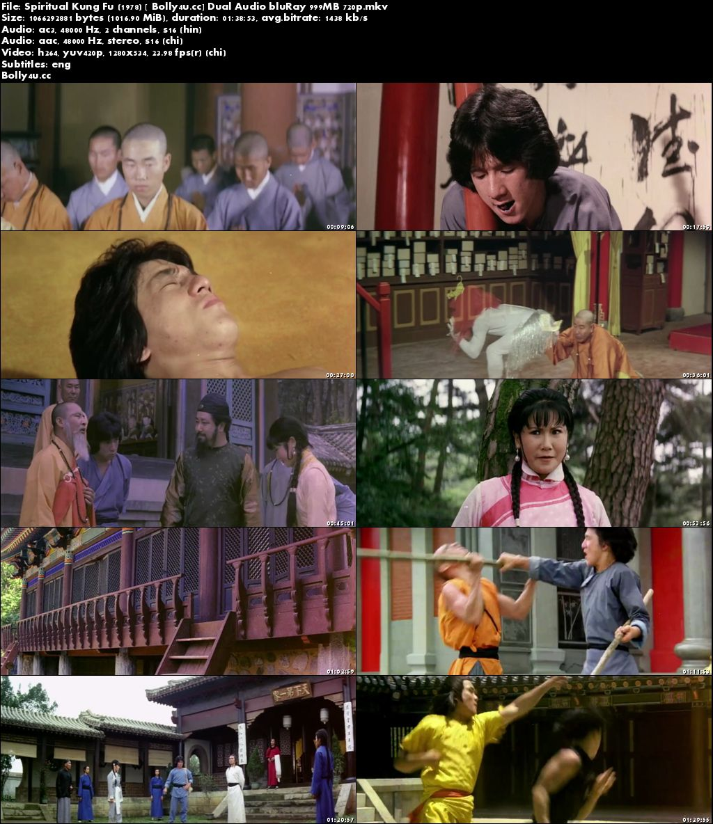Spiritual Kung Fu 1978 BluRay 300MB Hindi Dual Audio 480p Download