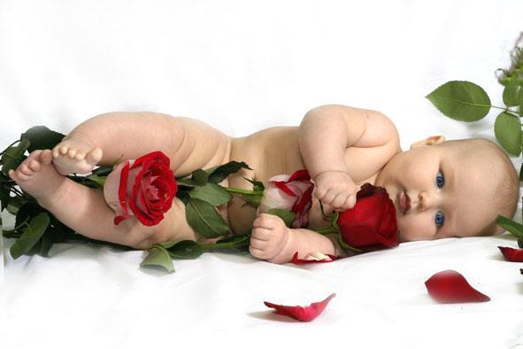 image de bébé dans les roses
