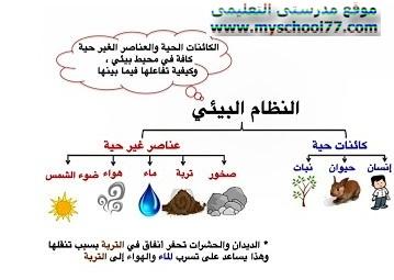 مكونات النظام البيئى