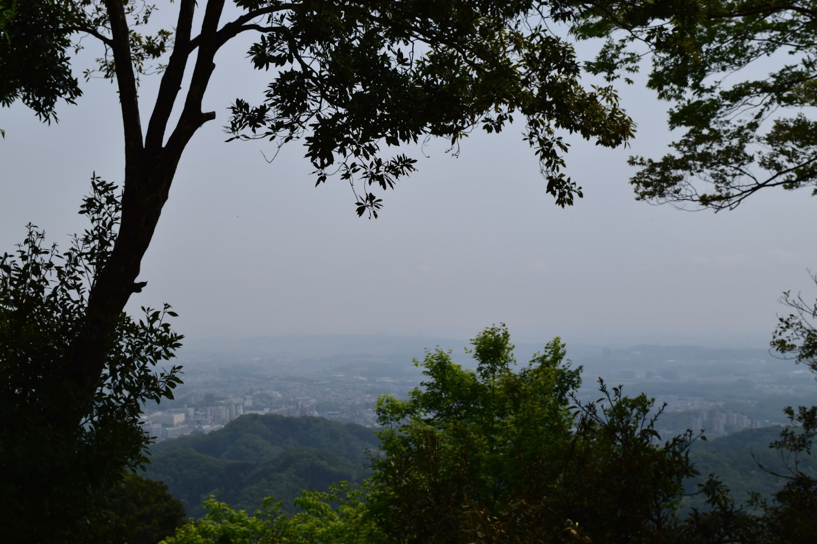 Mount Takao view