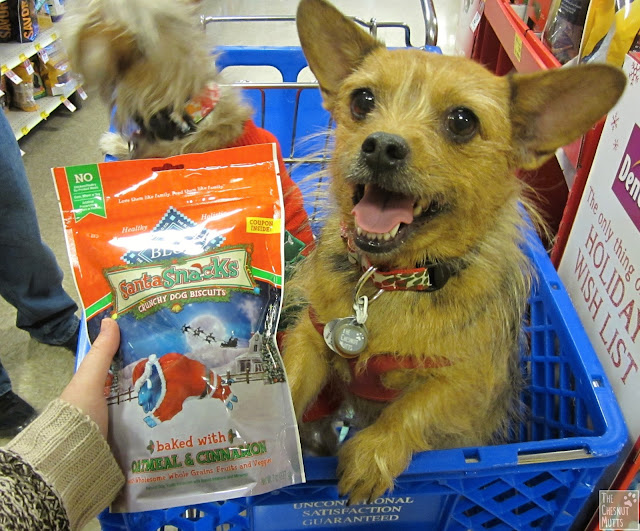 Jada and Blue Buffalo Santa Snacks
