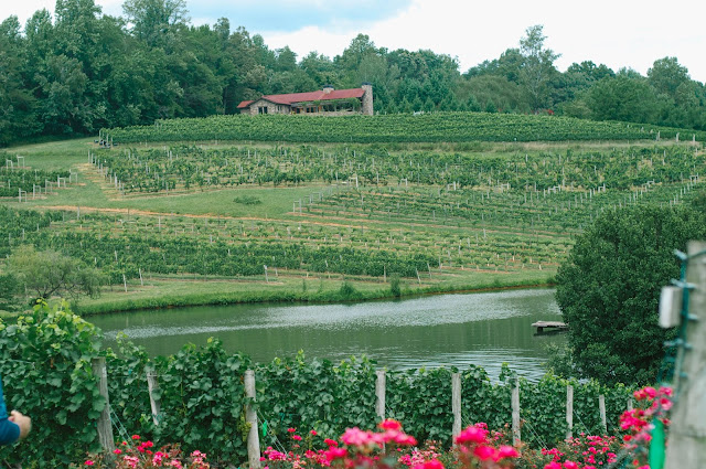 Crane Creek Vineyard, Young Harris, GA