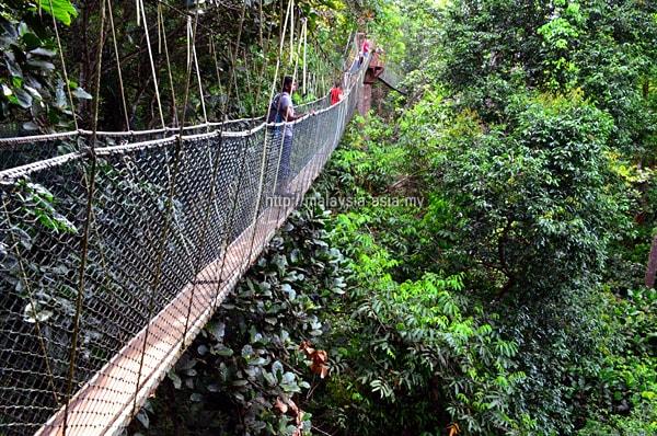 Day Trip to Taman Negara