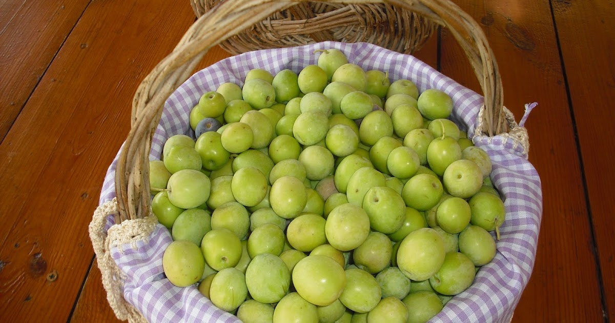 preparar aceitunas verdes partidas