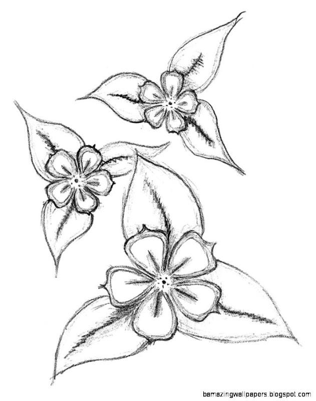 Flower Wallpaper Drawing Easy