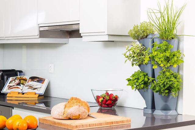 Minigarden il tuo orto sul balcone o in cucina food and - Cucina sul balcone ...