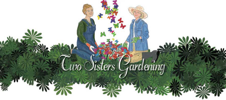 Two Sisters Gardening