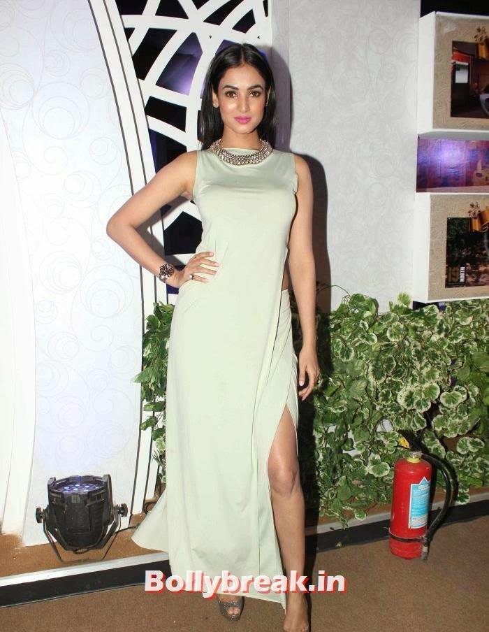 Sonal Chauhan, Celebs at India Bridal Fashion Week 2013 Day-6