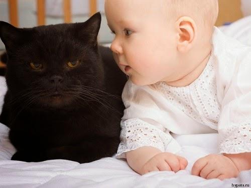 Photo chat avec Bébé fille