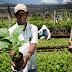 Governo do Estado anuncia mais de R$ 900 mil para Agricultura Familiar do Sertão do São Francisco