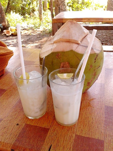 14 Manfaat Air Kelapa Bagi kesehatan dan Ibu hamil