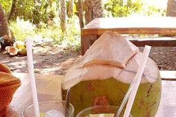 16 Manfaat Air Kelapa Bagi kesehatan dan Ibu hamil