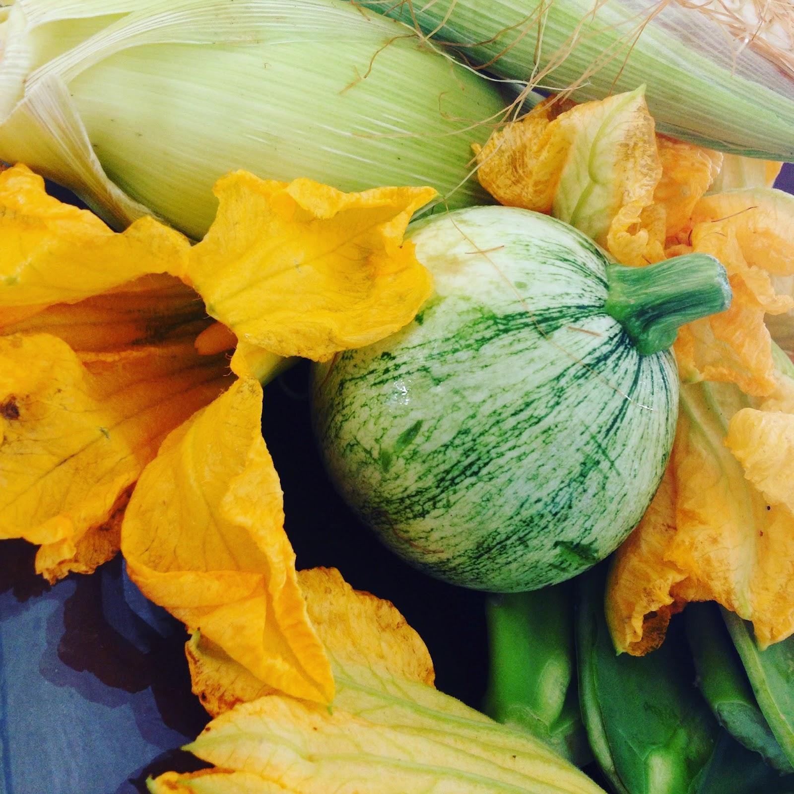 La semilla vegana la tienda - Semillas de frutas y verduras ...
