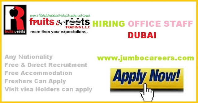 latest freshers jobs in dubai with visa