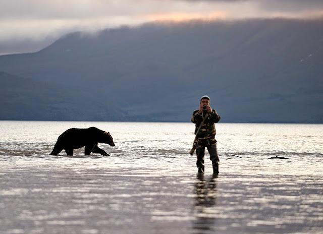 инструкция +при встрече +с медведем